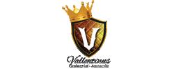 Vallentinus Cerimonial & Assessoria